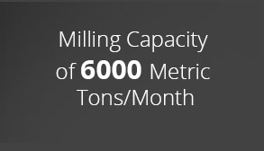 Milling Capacity of 6000 Metric Tons/Month